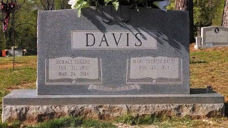 DAVIS, HORACE EUGENE - Montgomery County, Tennessee   HORACE EUGENE DAVIS - Tennessee Gravestone Photos