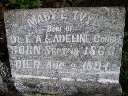 COBBLE IVY, MARY E. - Moore County, Tennessee | MARY E. COBBLE IVY - Tennessee Gravestone Photos