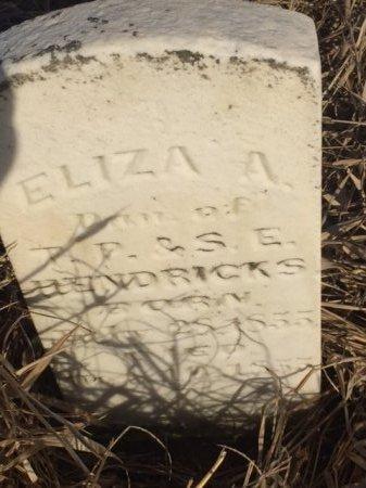 HENDRICKS, ELIZA - Obion County, Tennessee | ELIZA HENDRICKS - Tennessee Gravestone Photos