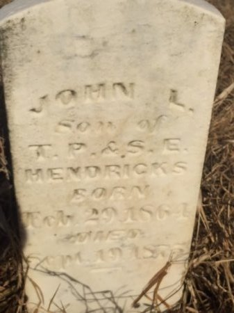 HENDRICKS, JOHN - Obion County, Tennessee | JOHN HENDRICKS - Tennessee Gravestone Photos