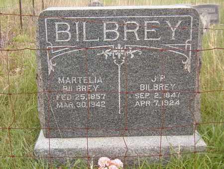 BILBREY, MARTELIA - Overton County, Tennessee | MARTELIA BILBREY - Tennessee Gravestone Photos