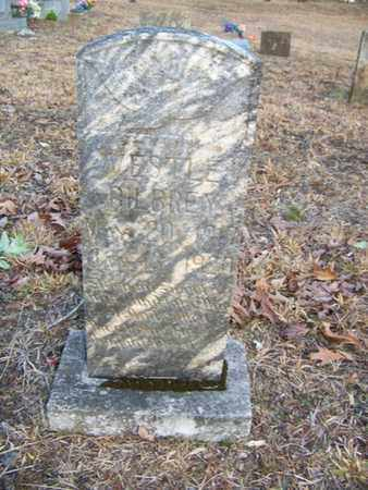 BILBREY, VESTLE - Overton County, Tennessee | VESTLE BILBREY - Tennessee Gravestone Photos