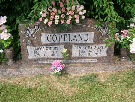 ALLRED COPELAND, CLEOPATRA - Overton County, Tennessee | CLEOPATRA ALLRED COPELAND - Tennessee Gravestone Photos