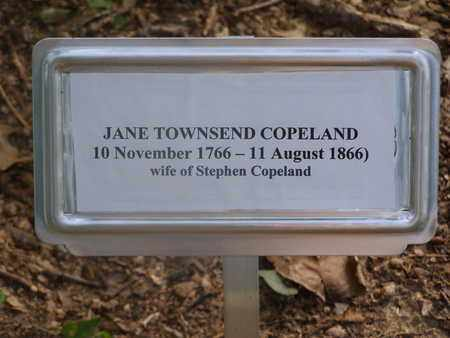 COPELAND, JANE - Overton County, Tennessee | JANE COPELAND - Tennessee Gravestone Photos