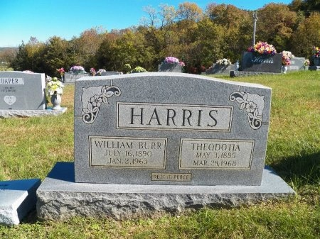 AUSTIN HARRIS, THEODOTIA - Overton County, Tennessee   THEODOTIA AUSTIN HARRIS - Tennessee Gravestone Photos