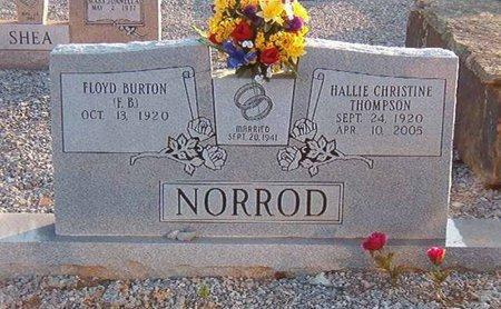 NORROD, HALLIE CHRISTINE - Overton County, Tennessee | HALLIE CHRISTINE NORROD - Tennessee Gravestone Photos