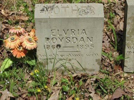 ROYSDAN, ELVRIA - Pickett County, Tennessee | ELVRIA ROYSDAN - Tennessee Gravestone Photos