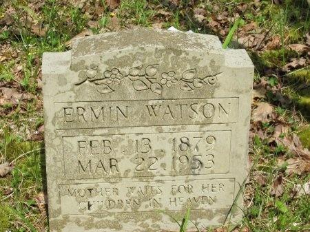 ROYSDEN WATSON, ERMIN - Pickett County, Tennessee | ERMIN ROYSDEN WATSON - Tennessee Gravestone Photos