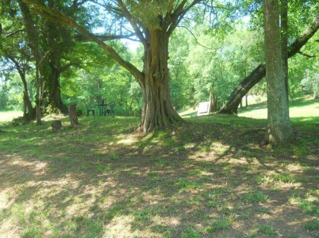 *CEMETERY OVERVIEW,  - Polk County, Tennessee |  *CEMETERY OVERVIEW - Tennessee Gravestone Photos