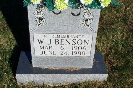 BENSON, WILLIE JAY - Putnam County, Tennessee | WILLIE JAY BENSON - Tennessee Gravestone Photos