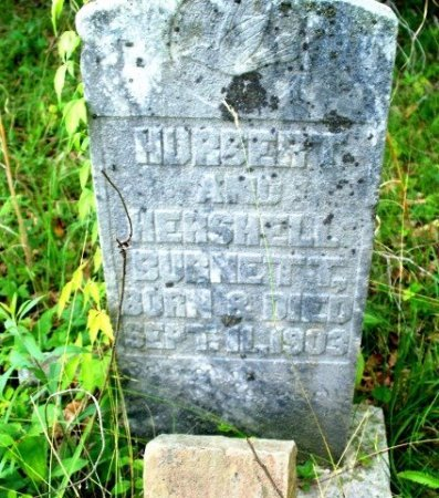 BURNETT, HUBERT - Putnam County, Tennessee | HUBERT BURNETT - Tennessee Gravestone Photos