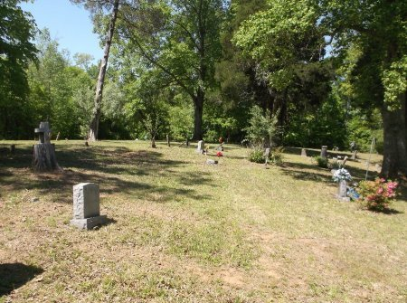 *CEMETERY VIEW,  - Rhea County, Tennessee    *CEMETERY VIEW - Tennessee Gravestone Photos