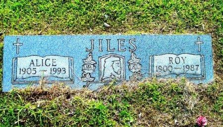 JILES, ROY - Rhea County, Tennessee | ROY JILES - Tennessee Gravestone Photos