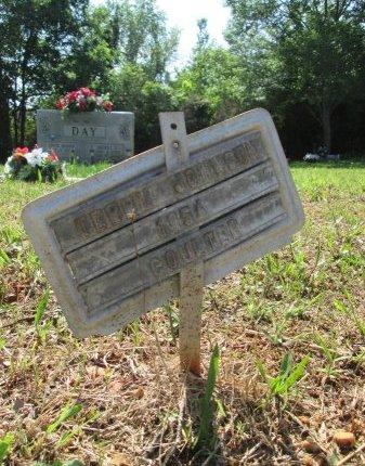 JOHNSON, TERRY - Rhea County, Tennessee   TERRY JOHNSON - Tennessee Gravestone Photos
