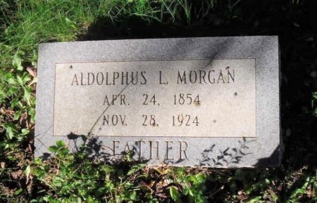 MORGAN, ALDOLPHYS L. - Rhea County, Tennessee | ALDOLPHYS L. MORGAN - Tennessee Gravestone Photos