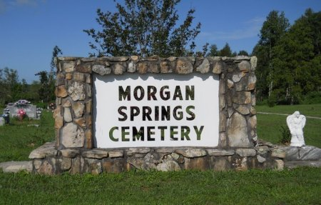 *MORGAN SPRINGS SIGN,  - Rhea County, Tennessee |  *MORGAN SPRINGS SIGN - Tennessee Gravestone Photos