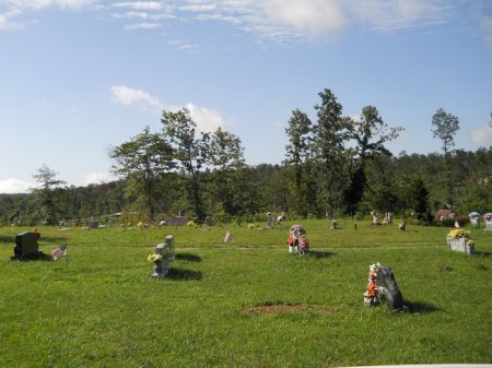 *OVERVIEW,  - Rhea County, Tennessee |  *OVERVIEW - Tennessee Gravestone Photos