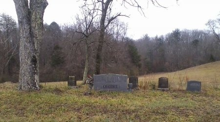 *ABEL CEMETERY OVERVIEW,  - Roane County, Tennessee |  *ABEL CEMETERY OVERVIEW - Tennessee Gravestone Photos