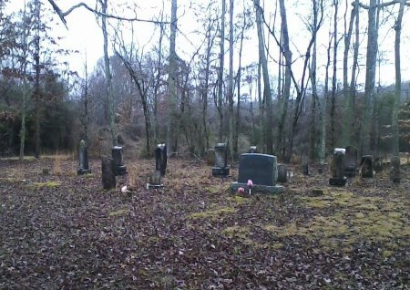*CEMETERY VIEW,  - Roane County, Tennessee |  *CEMETERY VIEW - Tennessee Gravestone Photos
