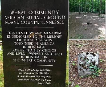 *WHEAT COMMUNITY OVERVIEW,  - Roane County, Tennessee |  *WHEAT COMMUNITY OVERVIEW - Tennessee Gravestone Photos