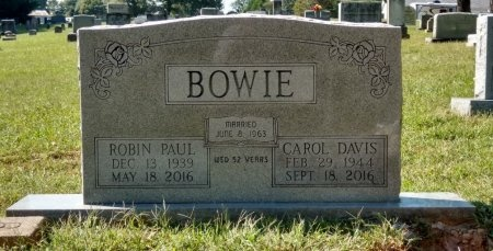 BOWIE, CAROL LEE - Robertson County, Tennessee | CAROL LEE BOWIE - Tennessee Gravestone Photos