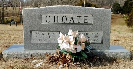 CHOATE, WILLIE ANN - Robertson County, Tennessee | WILLIE ANN CHOATE - Tennessee Gravestone Photos