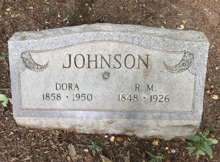 JOHNSON, ROBERT M. - Robertson County, Tennessee | ROBERT M. JOHNSON - Tennessee Gravestone Photos