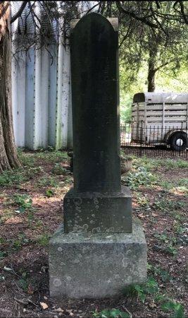 MATHEWSON, ELIZABETH JANE - Robertson County, Tennessee | ELIZABETH JANE MATHEWSON - Tennessee Gravestone Photos