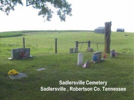 *SADLERSVILLE OVERVIEW,  - Robertson County, Tennessee    *SADLERSVILLE OVERVIEW - Tennessee Gravestone Photos