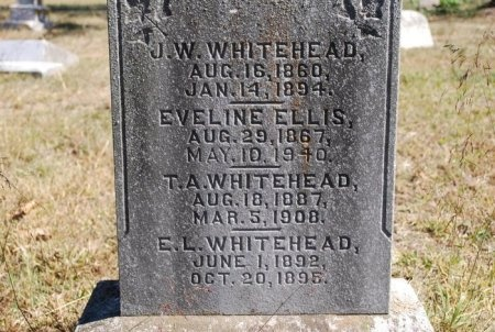 WHITEHEAD, T. A. - Robertson County, Tennessee | T. A. WHITEHEAD - Tennessee Gravestone Photos