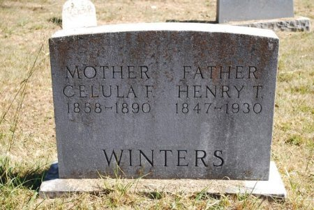 WINTERS, HENRY TAYLOR - Robertson County, Tennessee | HENRY TAYLOR WINTERS - Tennessee Gravestone Photos