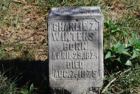 WINTERS, CHARLIE Z. - Robertson County, Tennessee   CHARLIE Z. WINTERS - Tennessee Gravestone Photos