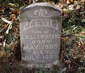 WINTERS, JARVIS - Robertson County, Tennessee | JARVIS WINTERS - Tennessee Gravestone Photos