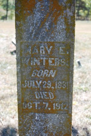 WINTERS, MARY ELIZABETH (CLOSE UP) - Robertson County, Tennessee | MARY ELIZABETH (CLOSE UP) WINTERS - Tennessee Gravestone Photos