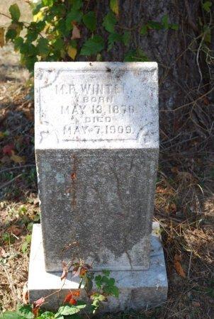 WINTERS, MELVIN FARMER - Robertson County, Tennessee | MELVIN FARMER WINTERS - Tennessee Gravestone Photos