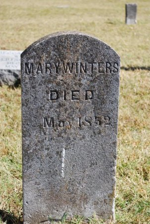 WINTERS, MARY - Robertson County, Tennessee | MARY WINTERS - Tennessee Gravestone Photos