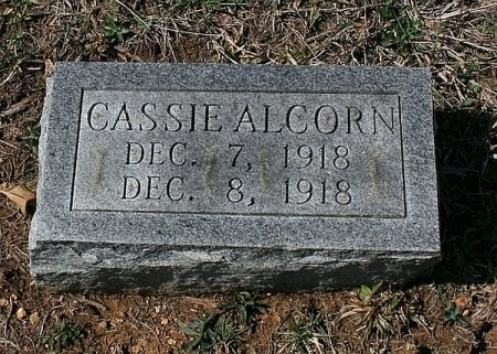 ALCORN, CASSIE - Rutherford County, Tennessee | CASSIE ALCORN - Tennessee Gravestone Photos