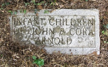 ARNOLD, INFANTS - Rutherford County, Tennessee | INFANTS ARNOLD - Tennessee Gravestone Photos