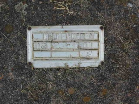 BURRIS, ELLA - Rutherford County, Tennessee | ELLA BURRIS - Tennessee Gravestone Photos