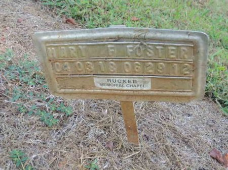 FOSTER, MARY F - Rutherford County, Tennessee | MARY F FOSTER - Tennessee Gravestone Photos