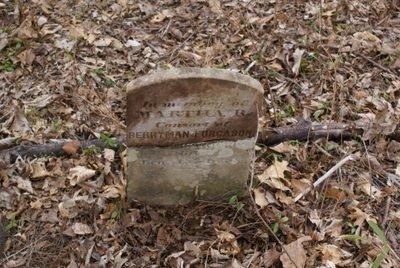 COLLIER FURGASON, MARTHA R. - Rutherford County, Tennessee   MARTHA R. COLLIER FURGASON - Tennessee Gravestone Photos
