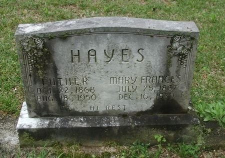 HAYES, LUTHER - Rutherford County, Tennessee | LUTHER HAYES - Tennessee Gravestone Photos