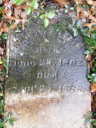LEATH, WILLIAM E. - Rutherford County, Tennessee | WILLIAM E. LEATH - Tennessee Gravestone Photos