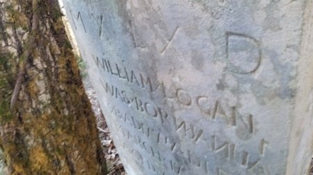 LOGAN, WILLIAM - Rutherford County, Tennessee | WILLIAM LOGAN - Tennessee Gravestone Photos