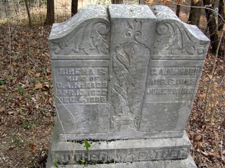 MCNABB, C. A. - Rutherford County, Tennessee | C. A. MCNABB - Tennessee Gravestone Photos