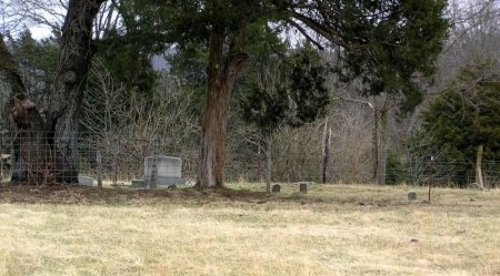 *MURRAY OVERVIEW,  - Rutherford County, Tennessee |  *MURRAY OVERVIEW - Tennessee Gravestone Photos