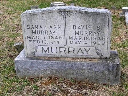 MURRAY, DAVIS B. - Rutherford County, Tennessee | DAVIS B. MURRAY - Tennessee Gravestone Photos