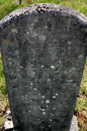 THOMPSON, TENNIE ANN - Rutherford County, Tennessee | TENNIE ANN THOMPSON - Tennessee Gravestone Photos