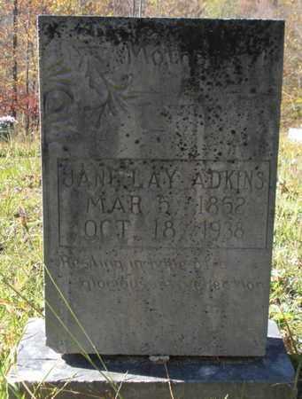 ADKINS, JANE - Scott County, Tennessee | JANE ADKINS - Tennessee Gravestone Photos