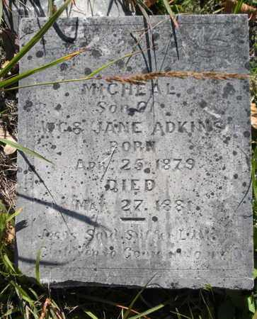 ADKINS, MICHEAL - Scott County, Tennessee   MICHEAL ADKINS - Tennessee Gravestone Photos